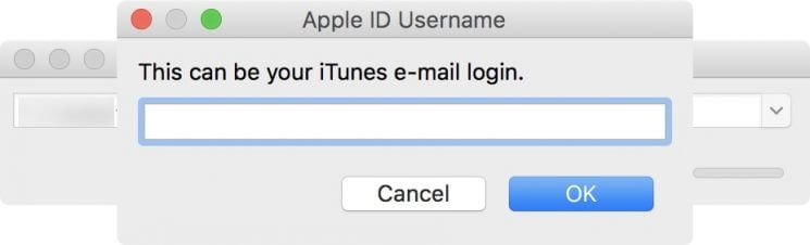 Provide Apple ID-Google Play Store for iOS